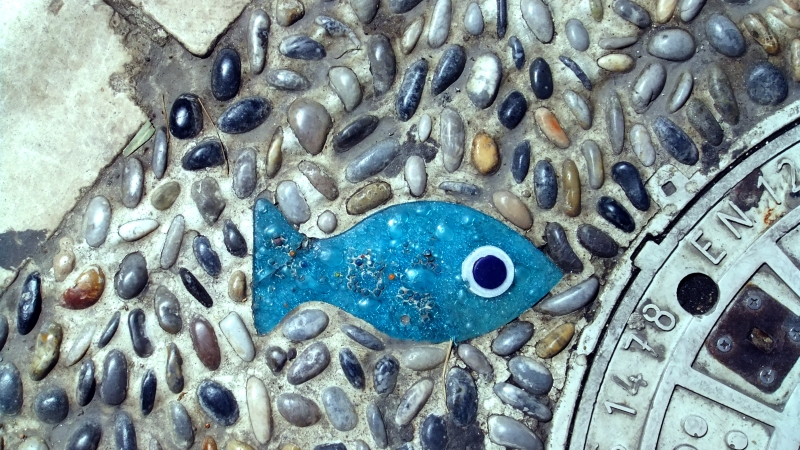 Turkey - Road fish. Bodrum