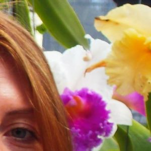 Julia Orchid