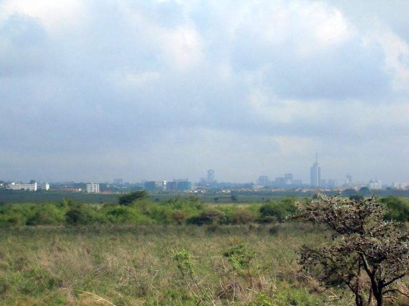 Kenia, Nairobi - park, city view